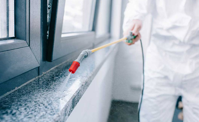How Does Inspection Services Help You