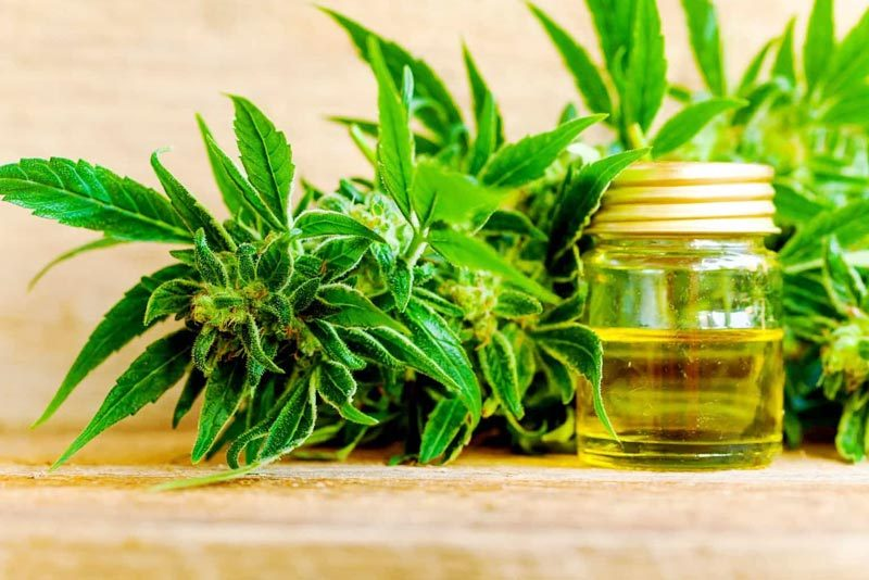 cbd oil how to use