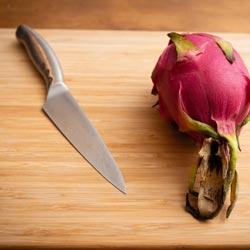 small knife Petty