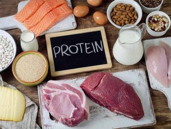 What Is A High Protein Diet