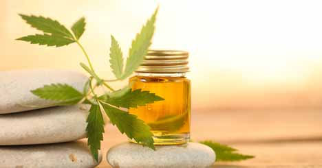 Directions Of Using the CBD Oil