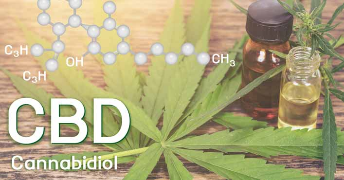 The Cannabidiol Oil For Pain Relief