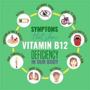 Vitamin B12 and Why the Body Needs It
