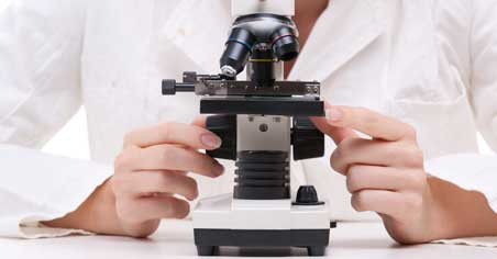digital monocular microscopes