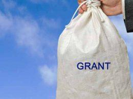 Small Government Grants