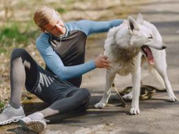 How to Keep Your Boxer Dog Healthy and Fit